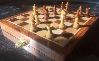 Strategische Schachzüge in unsicheren Zeiten